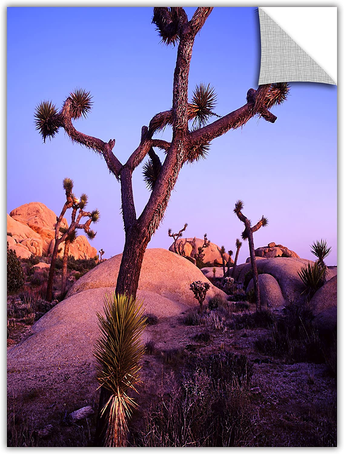 ArtWall Dean Uhlinger Joshua Tree Twilight Removable Graphic Wall Art, 18 by 24Inch