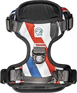 Embark Urban Dog Harness, Easy On and Off with Front and Back Leash Attachments & Control Handle - No Pull Training, Size Adjustable and Non Choke