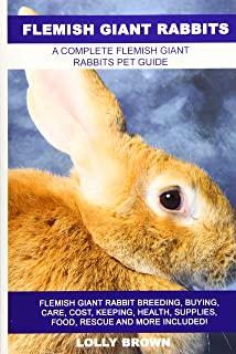 flemish giant rabbit cost