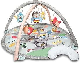 Skip Hop Treetop Friends Baby Developmental Play Mat Activity Gym, Nature Inspired Grey/Pastel Theme