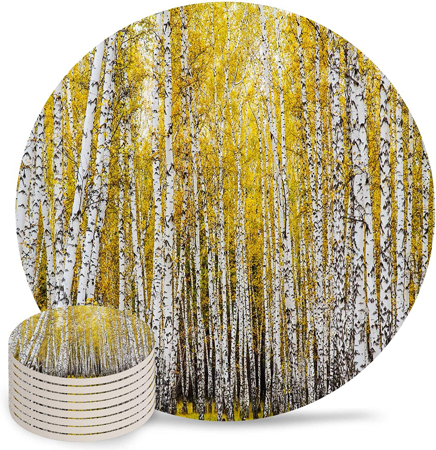 Coasters Max 51% OFF for Lowest price challenge Drinks Set of 8 Trees Yellow Autumn Poplar Beautif