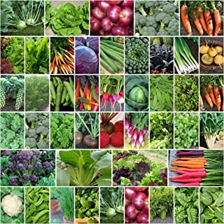 Mixed Autumn Winter 5000+ Seeds Cool Season Heirloom Vegetable & HERB 50 Packets