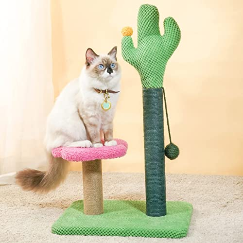 high quality MEWOOFUN Cat Cactus Scratching Post 25 inches Tall Cactus Cat Scratcher sale with Hanging Ball Sisal Scratching Post for Indoor online sale Cat outlet online sale
