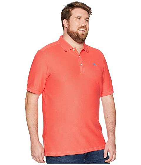 Tall amp; Emfielder Big Polo amp; Coral amp; Bright Big Tall Tommy Bahama amp; q84wnYg8S