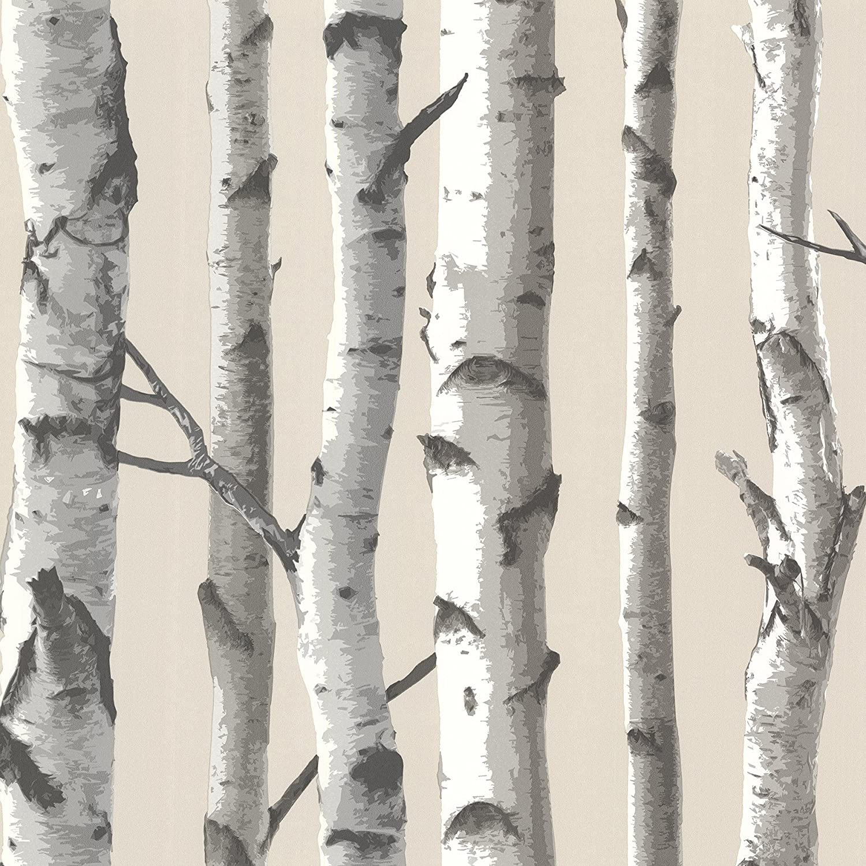 Chesapeake TLL21499 Tuxbury Birch Max 79% OFF Tree Beige 25% OFF Wallpaper