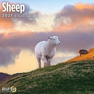 Bright Day Calendars 2021 Sheep Wall Calendar by Bright Day, 12 x 12 Inch, Cute Farm Animal