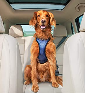 PetSafe Happy Ride Certified, Crash-Tested, Comfortable, Durable, Dog Safety Harness, Large