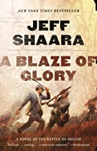 A Blaze of Glory: A Novel of the Battle of Shiloh (Civil War: 1861-1865, Western Theater series Book 1)