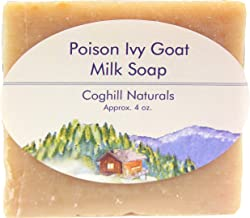 Poison Ivy Soap Bar That Really Works! All-Natural Soothing Treatment with Jewelweed-Infused Goat Milk