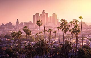 QCWN Palm Tree Decor Beautiful Sunset of Los Angeles Downtown Skyline Wall Hanging Large Tapestry for Bedroom Living Room Dorm.Multi 91x58Inc