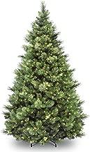 National Tree 6.5 Foot Carolina Pine Tree with 650 Clear Lights