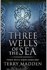 Three Wells of the Sea: Three Wells Series Book 1 Kindle Edition