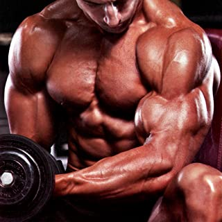 Top Body Building Tips