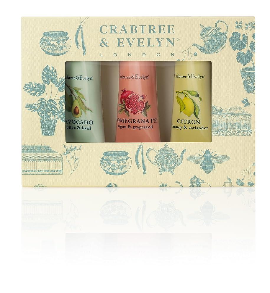 がっかりした彼らのもの省略するクラブツリー&イヴリン Botanicals Hand Therapy Set (1x Citron, Honey & Coriander, 1x Pomegranate, Argan & Grapeseed, 1x Avocado, Olive & Basil) 3x25g/0.9oz並行輸入品