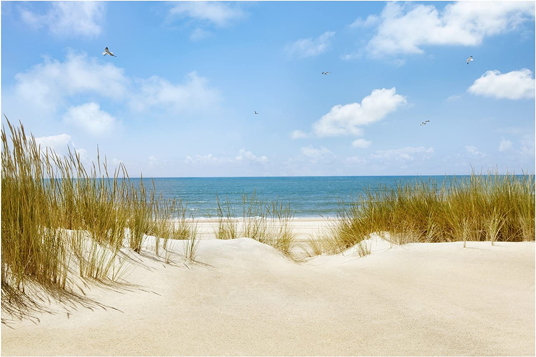 online al mejor precio Apalis fotográfico pintado playa playa playa en el mar del Norte de ancho, papel pintado para parojo pintado mural, Color azul, HxB  225 x 336 cm  muchas concesiones