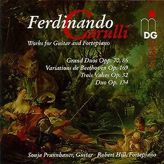 Grand Duo for Guitar and Fortepiano in E Minor, Op. 86: I. Allegro
