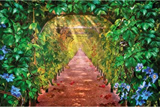 GREAT ART Poster - Vine Yard - Grapes Nature Landscape Grapevines Alley Art Artwork Artwork in The Green Graphic Illustrat...