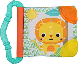 Bright Starts Teethe & Read Soft Book Toy, Ages 3 months +