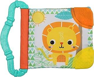 Bright Starts Teethe & Read Toy, Style May Vary