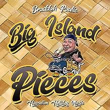 Best hawaiian holiday song Reviews