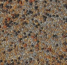 No-Till Cover Crop 13-Seed Mix (½-lb): [50% Clovers Plus Fenugreek, Vetch, Flax, Cowpeas, Buckwheat, Forage Peas, Millet, Lentils, Crimson Clover, Sweet Yellow Clover, White Clover, Medium Red Clover]