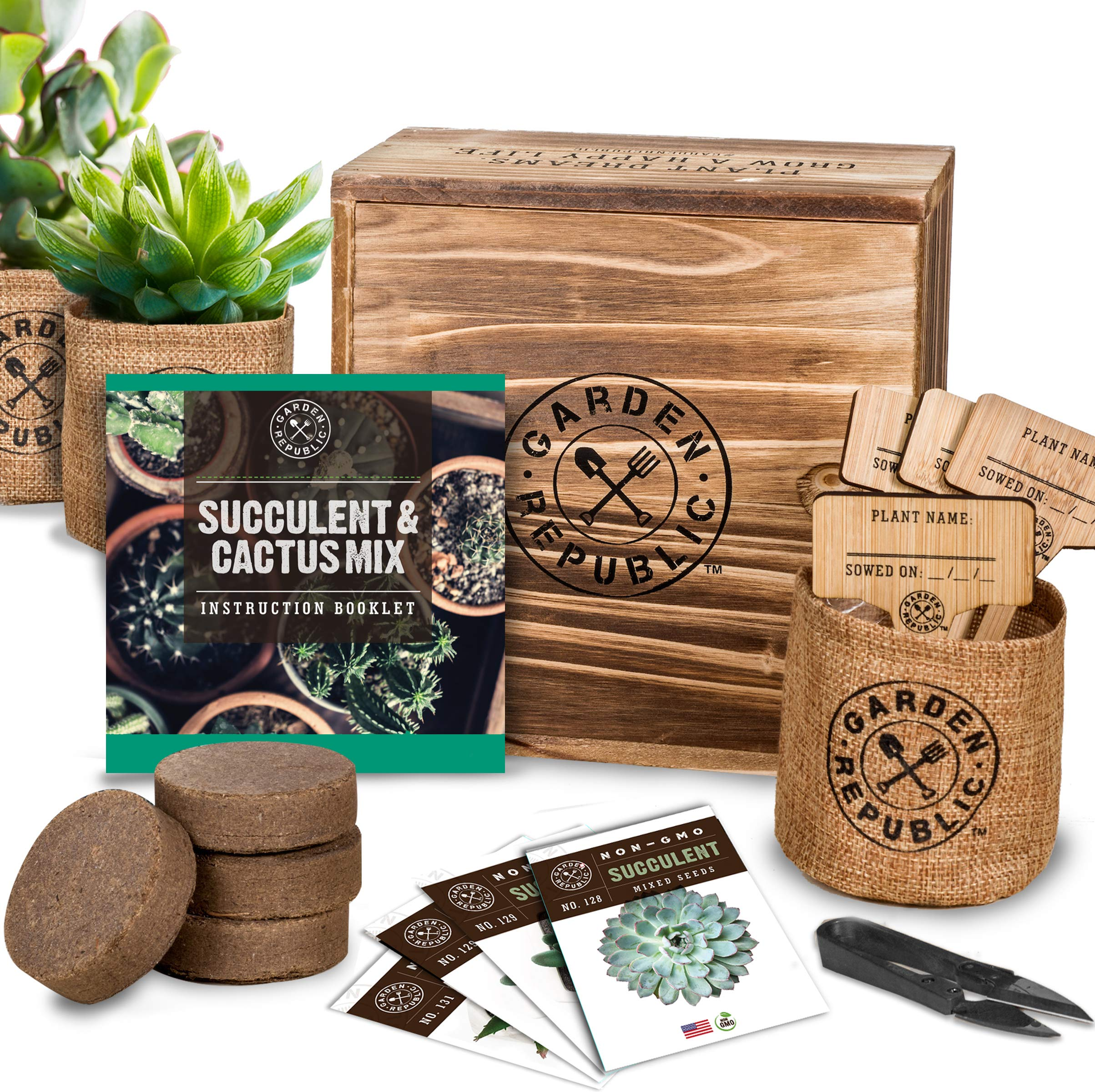 Amazon Com Cactus Succulent Seed Starter Kit Indoor Garden