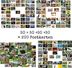 Lot de 10 cartes postales /« ENTSPANNUNG /& ACHTSAMKEIT /» avec animaux amusants et relaxants pour le petit temps de l/édition Colibri