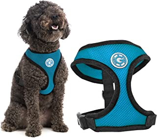 Gooby - Soft Mesh Harness, Small Dog Harness with Breathable Mesh, Sea Blue, Small