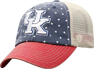 Top of The World NCAA Men's Hat Adjustable Freedom Icon