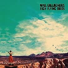 Best noel gallagher vinyl who built the moon Reviews