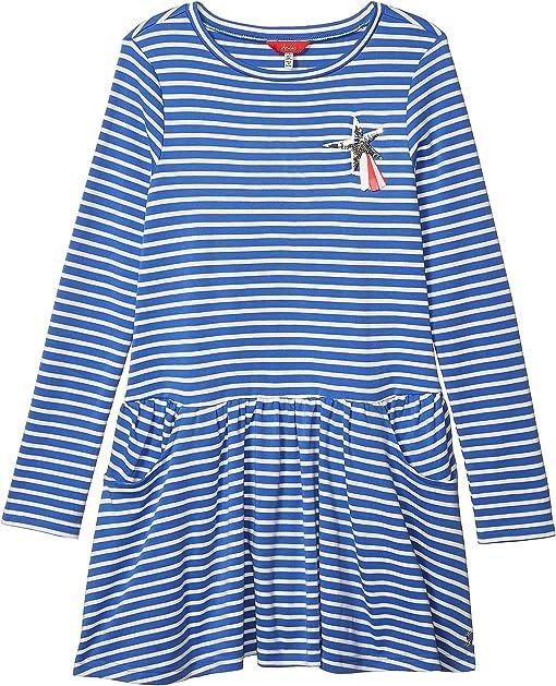 Blue Cream Stripe