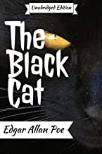 The Black Cat (annotated)(English Version): With Detailed Summary and Characters List