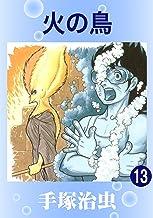 表紙: 火の鳥 13   手塚治虫