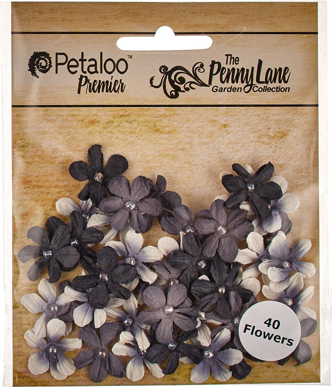Petaloo Papier Penny Lane Mini Pearl 1,9 Margeriten, Schwarz B00UY0V3SY | Vorzügliche Verarbeitung
