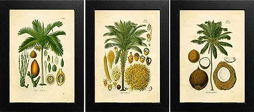 Best tropical art prints Reviews
