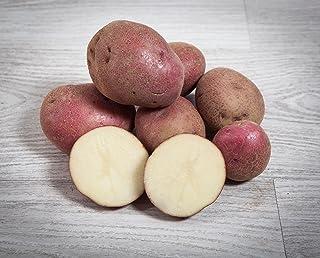 13 kg. Patata Roja / Especial para Guisar y Cocer - Selecci
