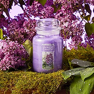 Best yankee candle mothers day Reviews
