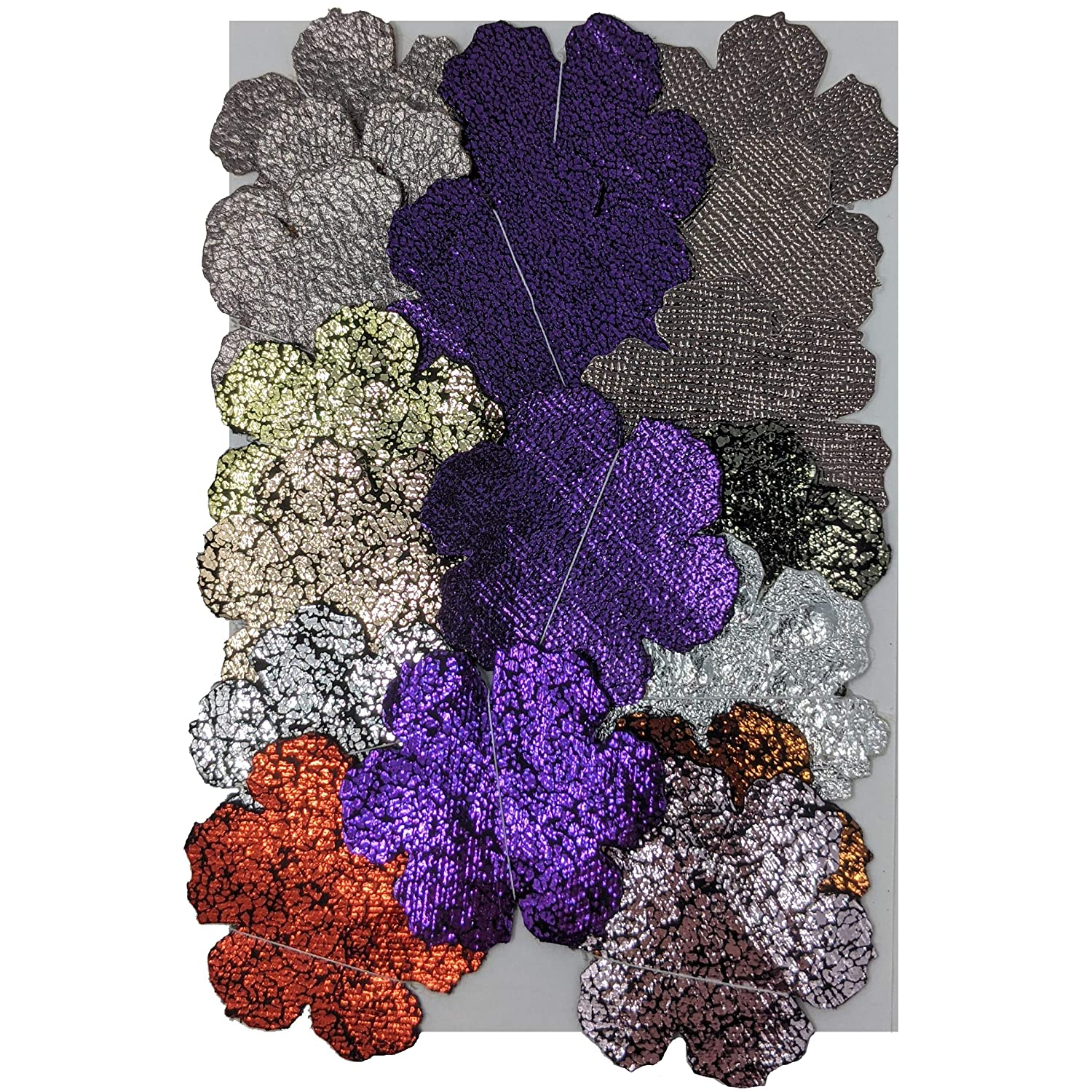 Colorful Shiny Textured Vinyl Industry No. 1 Cut Manufacturer OFFicial shop Flowers Die