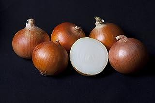 comprar comparacion 5 kg. Cebolla Grano (Común) tamaño GRANDE - Selección Gourmet