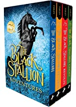 Best horse chapter books Reviews