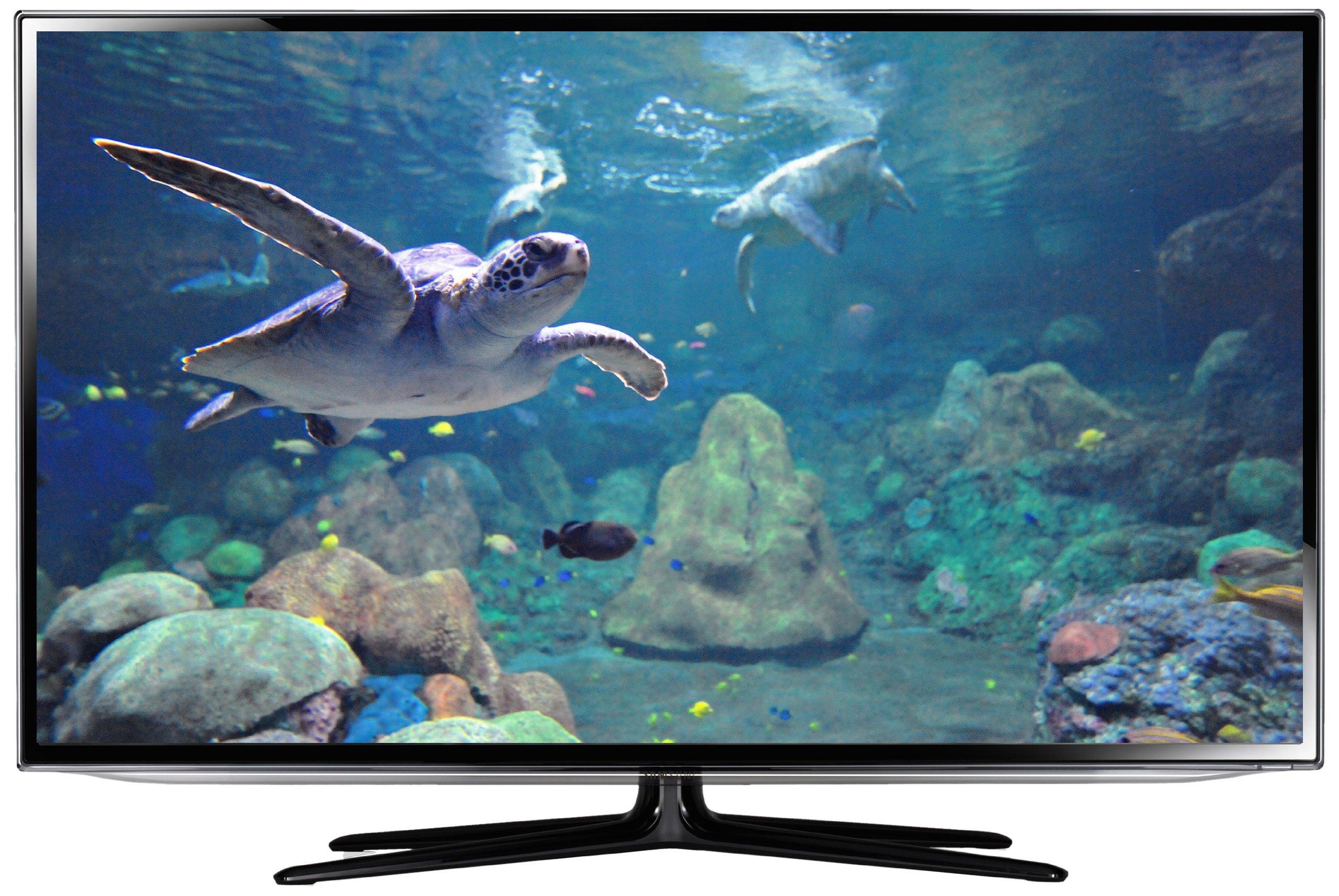 Samsung es6100 – Televisor con retroiluminación LED (Full HD, 200 ...