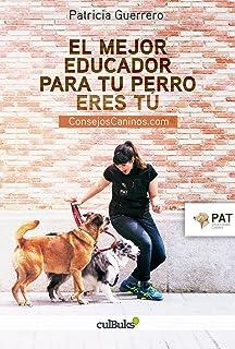 El mejor educador para tu perro eres tú : consejoscaninos.