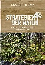 Strategien der Natur: Wie die Weisheit der Bäume unser Lebe