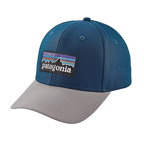 Patagonia Snapback  Amazon.com 46cbb73ee86a