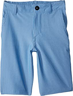 Quiksilver Kids Union Pinstripe Amphibian Shorts (Toddler/Little Kids)