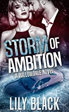 Storm of Ambition (Willowdale Book 2) (English Edition)