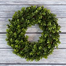 Boxwood Wreath, Artificial Wreath for The Front Door by Pure Garden, Home Décor, UV Resistant - 14 Inches, Rubber, 14x4