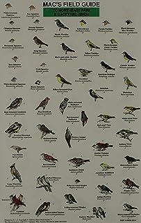 Mac's Field Guides: Northeast Park & Backyard Birds