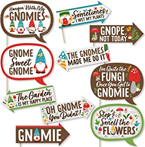 Big Dot of Happiness Funny Garden Gnomes - Forest Gnome Party Photo Booth Props Kit - 10 Piece
