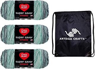 Red Heart Knitting Yarn Super Saver Ombre Fresh Mint 2-Skein Factory Pack (Same Dyelot) E305-4932 Bundle with 1 Artsiga Crafts Project Bag